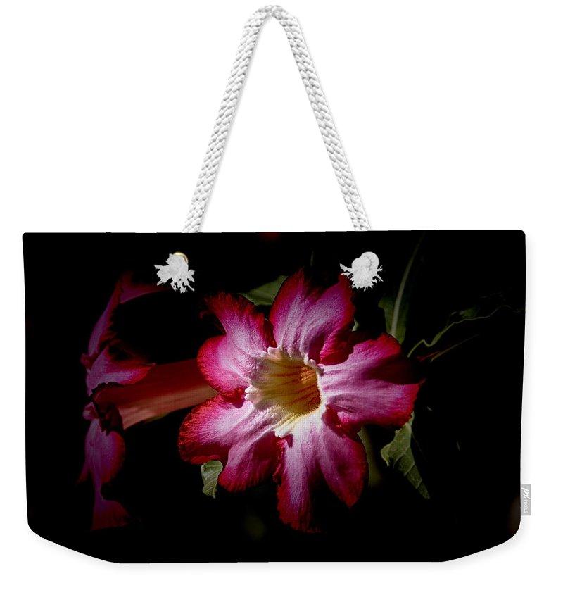 Desert Rose Weekender Tote Bag featuring the photograph Desert Rose V3 by Douglas Barnard