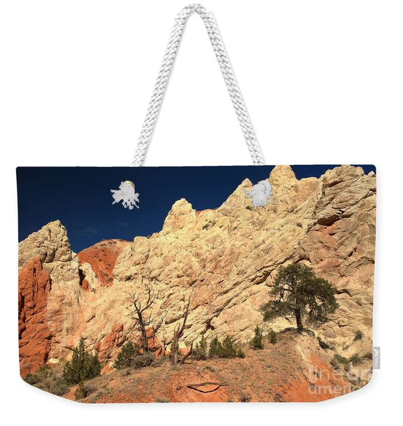 Cottonwood Road Weekender Tote Bag featuring the photograph Desert Salad by Adam Jewell