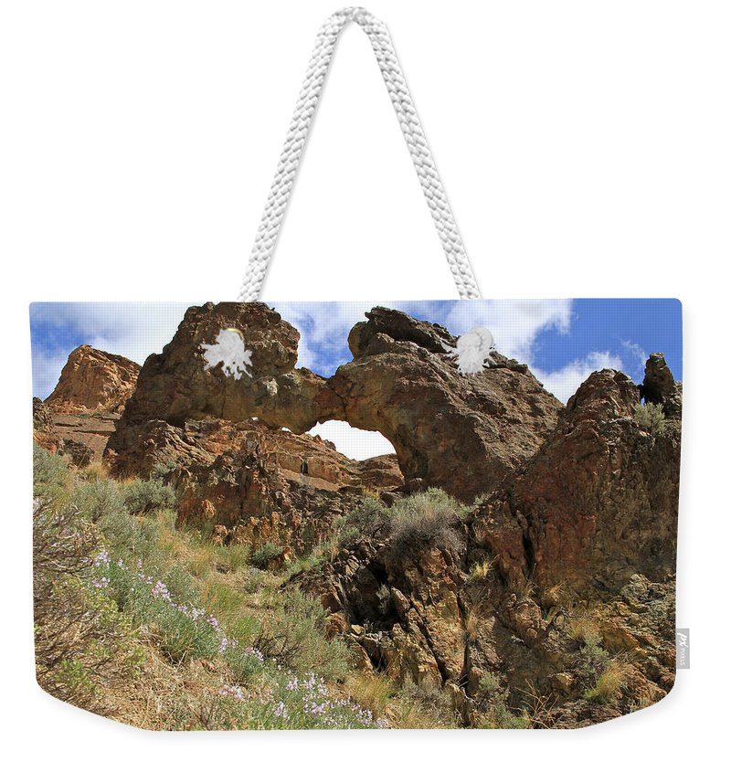 Landscape Weekender Tote Bag featuring the photograph Desert Wildflowers Grand Arch by Ed Riche