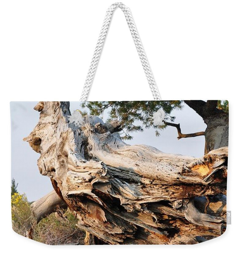 Idaho Weekender Tote Bag featuring the photograph Design By The Desert by Image Takers Photography LLC - Carol Haddon