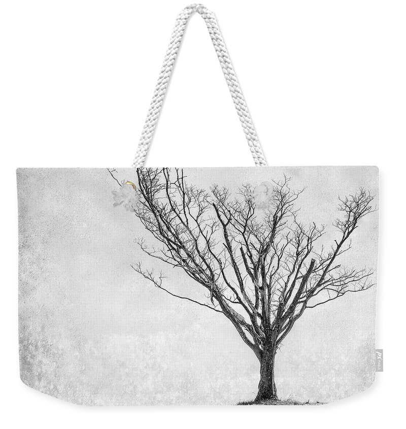 Landscape Photography Weekender Tote Bag featuring the photograph Desperate Reach by Scott Norris