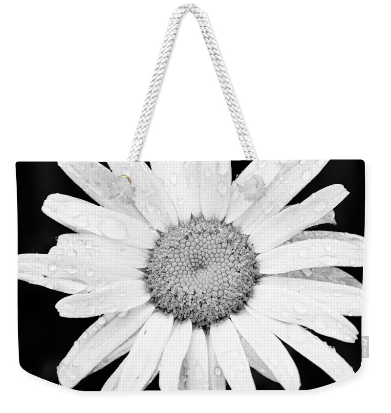 3scape Weekender Tote Bag featuring the photograph Dew Drop Daisy by Adam Romanowicz