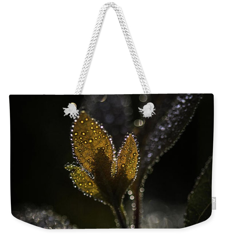 Dew Weekender Tote Bag featuring the photograph Dew Drops And Crystals by Dale Kincaid