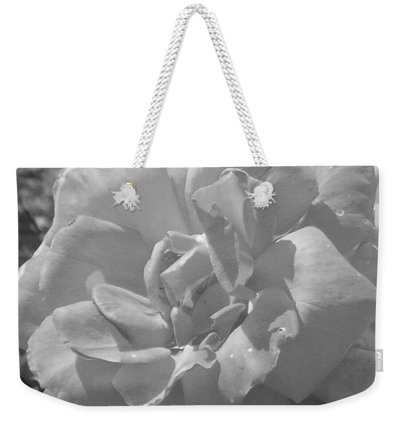 Rose Weekender Tote Bag featuring the photograph Dew Rose by Pharris Art