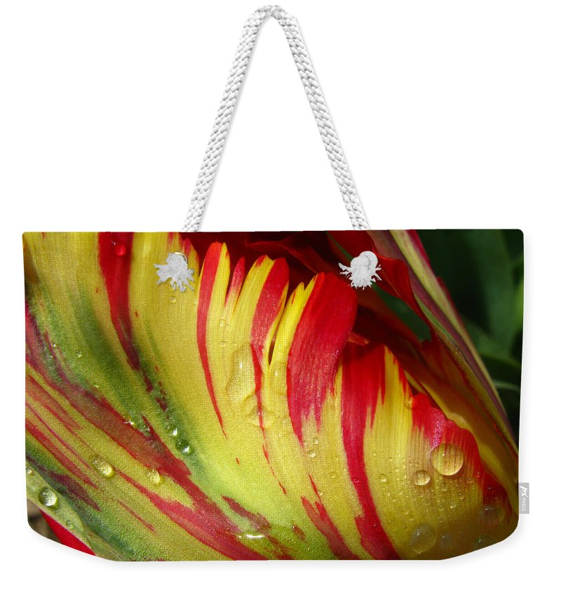 Tulip Weekender Tote Bag featuring the photograph Dewey Parrot by Lisa Foster