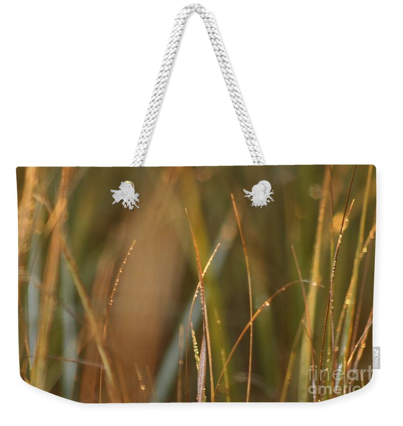 Dew Weekender Tote Bag featuring the photograph Dewy Grasses by Nadine Rippelmeyer