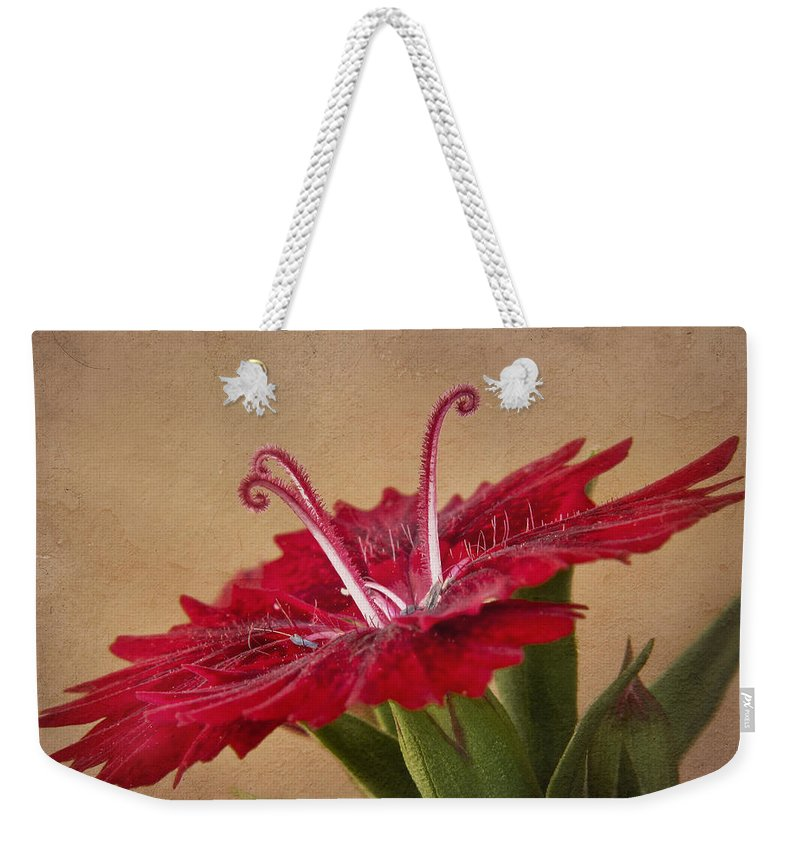 Flower Weekender Tote Bag featuring the photograph Dianthus by David and Carol Kelly