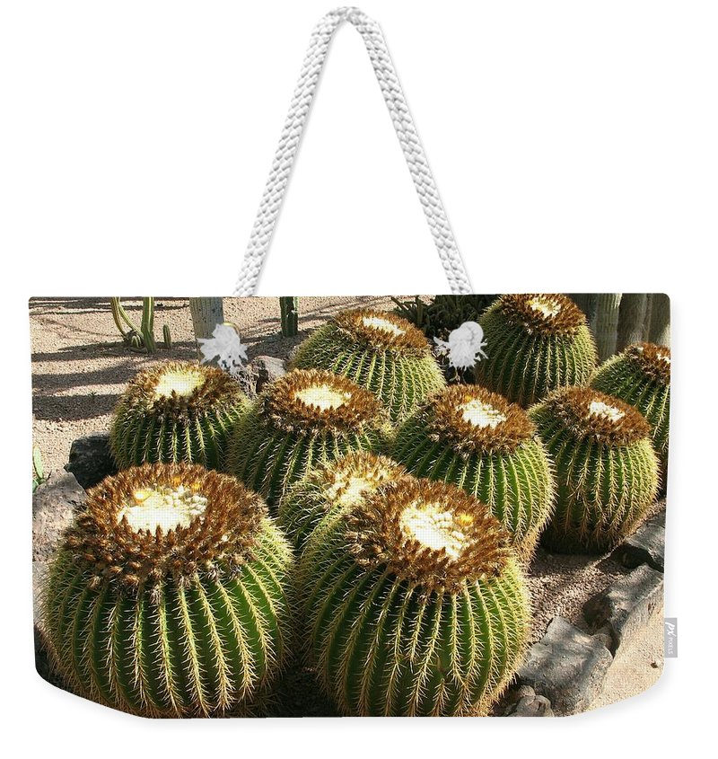 Green Cactus Weekender Tote Bag featuring the photograph Mother-in-law's Cushion by Christiane Schulze Art And Photography
