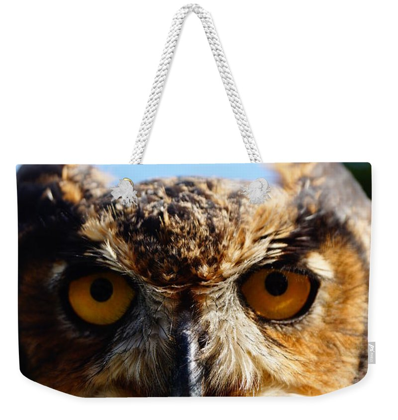 An Owl Looking Into Your Eyes Weekender Tote Bag featuring the photograph Did You Bring A Mouse by Jeffery L Bowers