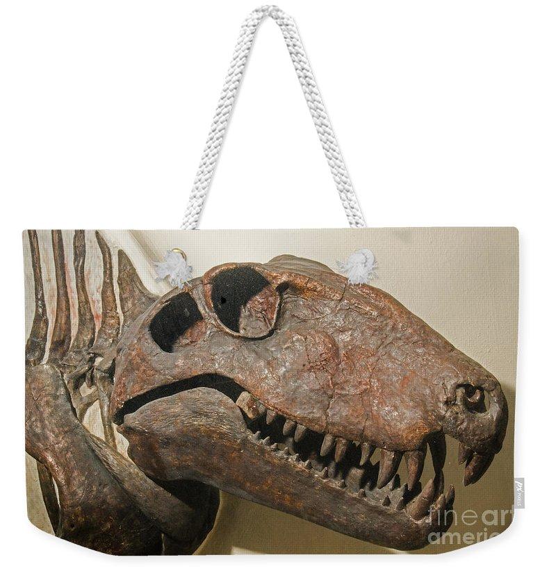 Nature Weekender Tote Bag featuring the photograph Dimetrodon Grandis by Millard H. Sharp