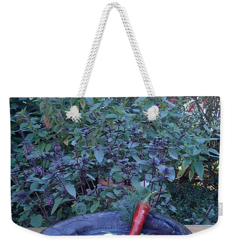 Conger Eel Weekender Tote Bag featuring the photograph Dinner Anyone? by Robert Nickologianis