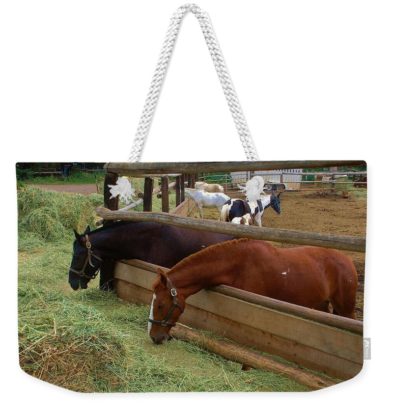 Ranch Weekender Tote Bag featuring the photograph Dinner At The Ranch by Dany Lison