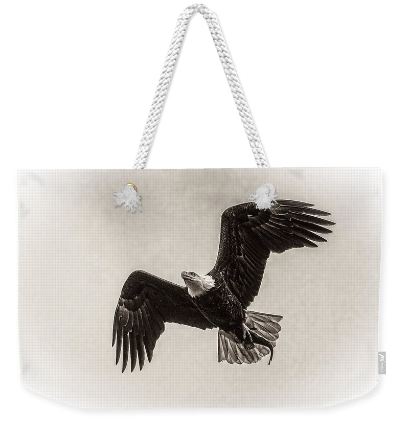 Dinner Time Black And White Weekender Tote Bag featuring the photograph Dinner Time Black And White by Wes and Dotty Weber