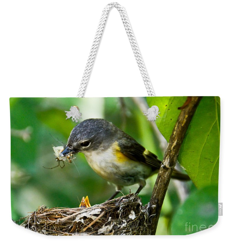 New Life Weekender Tote Bag featuring the photograph Dinner Time by Cheryl Baxter