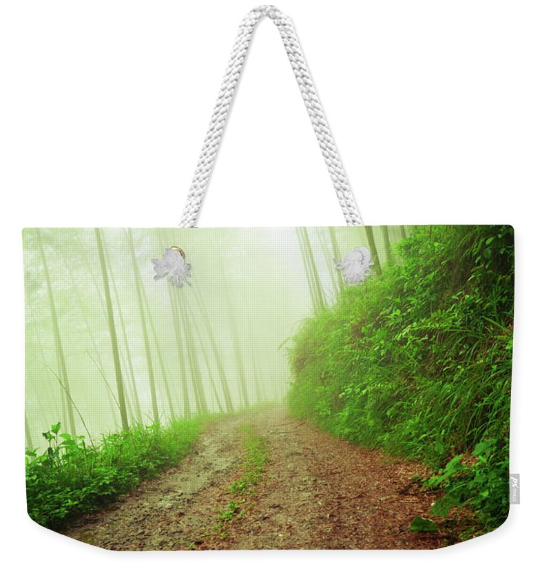 Extreme Terrain Weekender Tote Bag featuring the photograph Dirt Road Leading Through Foggy Forest by Fzant