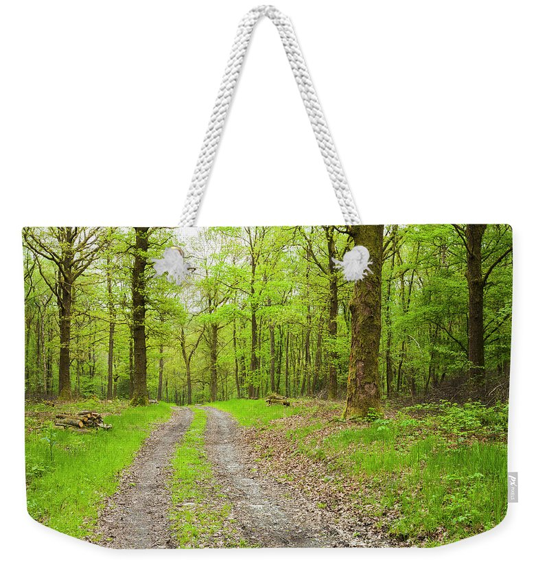 Scenics Weekender Tote Bag featuring the photograph Dirt Road Surrounded By Trees In by Mike Kemp Images