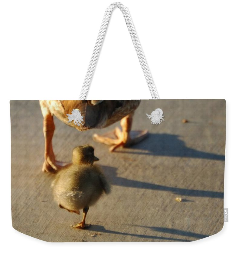 Feathers Weekender Tote Bag featuring the photograph Do What I Do 27708 by Jerry Sodorff