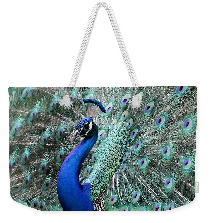 Amazing Weekender Tote Bag featuring the photograph Do You Like Me Now by Sabrina L Ryan