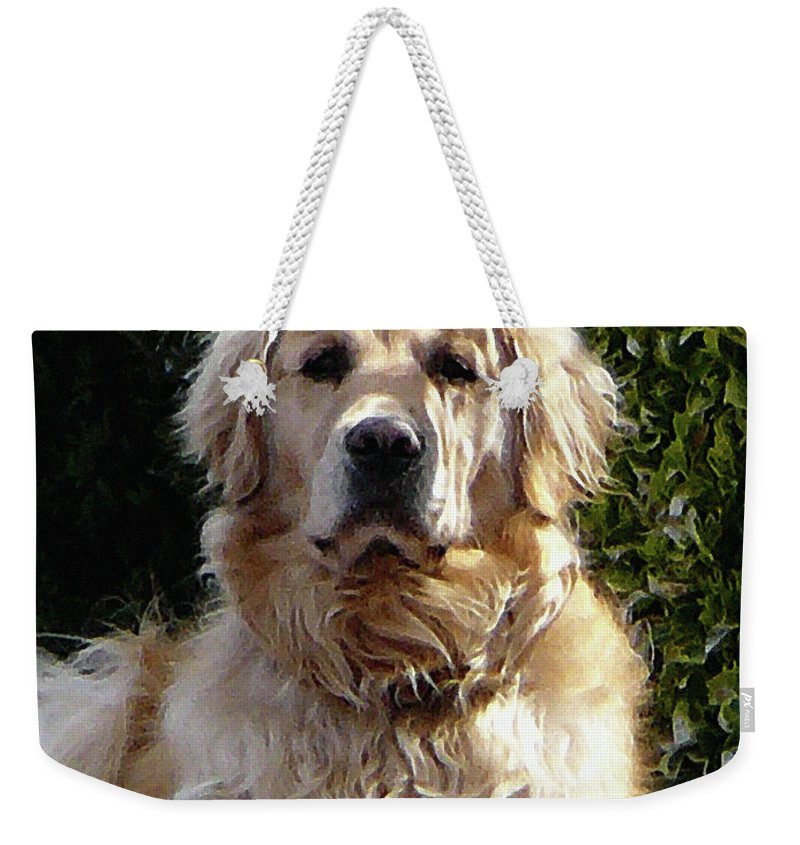 Dog Weekender Tote Bag featuring the photograph Dog On Guard by Susan Savad