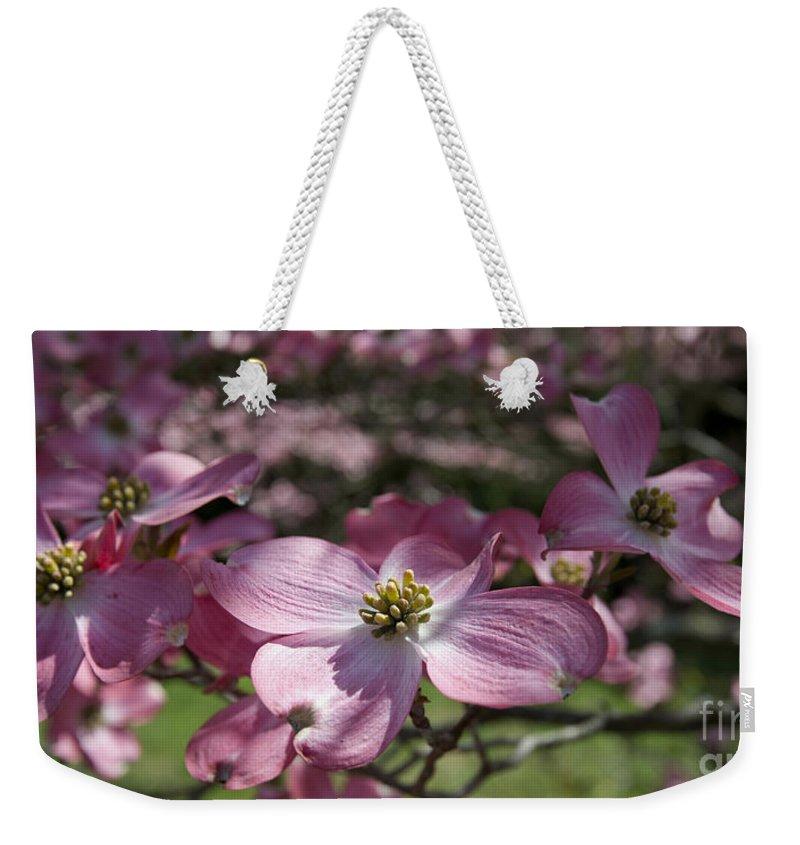 Spring Flowers Weekender Tote Bag featuring the photograph Dogwood 5576 by Terri Winkler