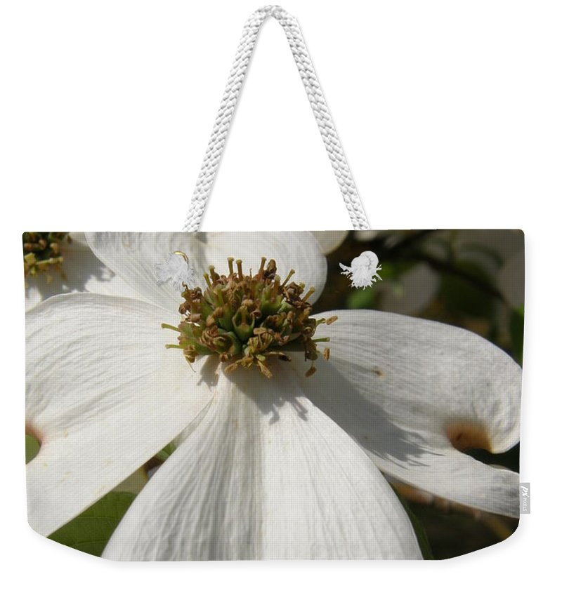 Signs Of The Cross Weekender Tote Bag featuring the photograph Dogwood Blossom by Caryl J Bohn