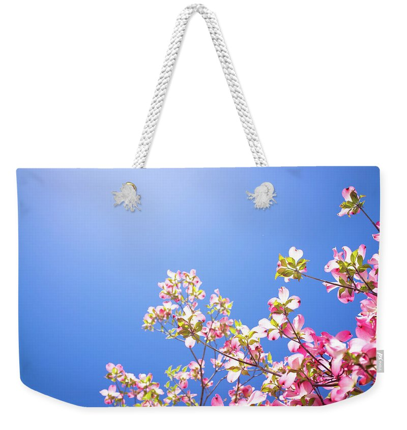 Dogwood Weekender Tote Bag featuring the photograph Dogwood Flowers by Marser