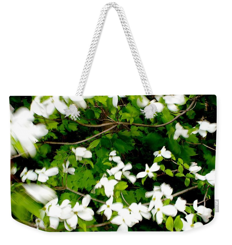 Wind Weekender Tote Bag featuring the photograph Dogwood In The Wind by Randy Pollard