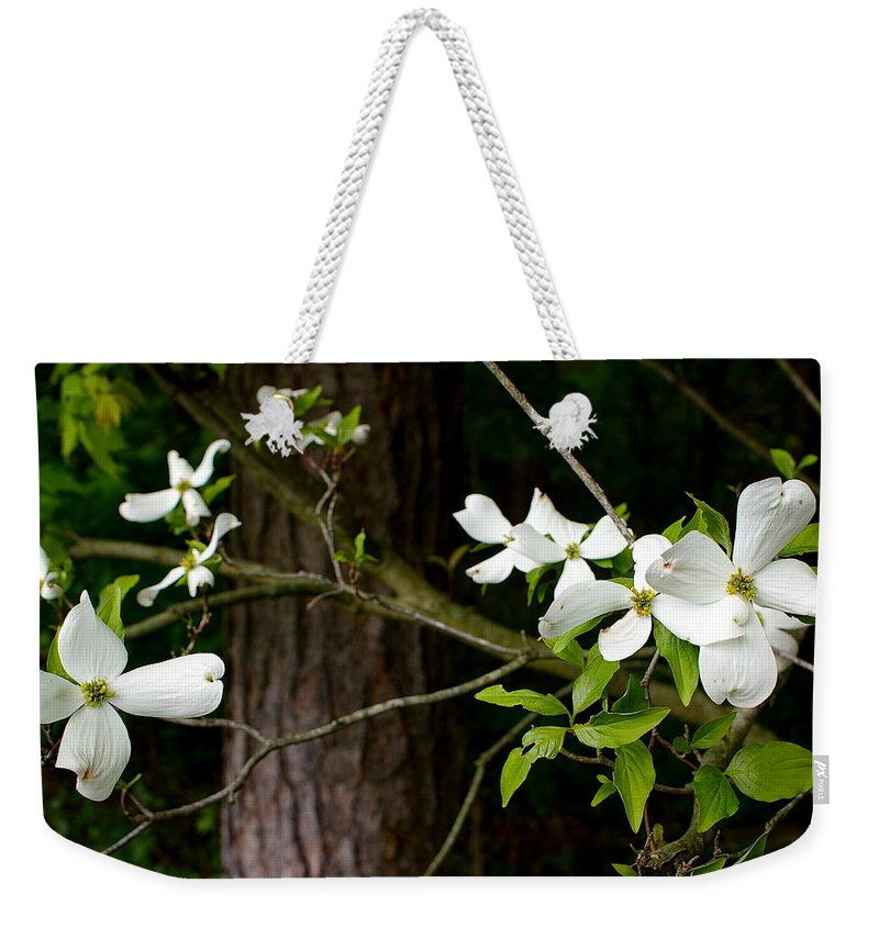 Flowers Weekender Tote Bag featuring the photograph Dogwood by Randy Pollard