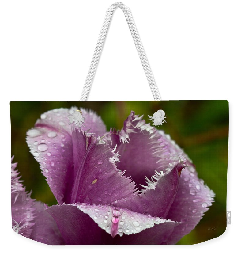 Tulip Weekender Tote Bag featuring the photograph Dont Call Me A Monster Just Because I Have Teeth Purple Tulip by Eti Reid