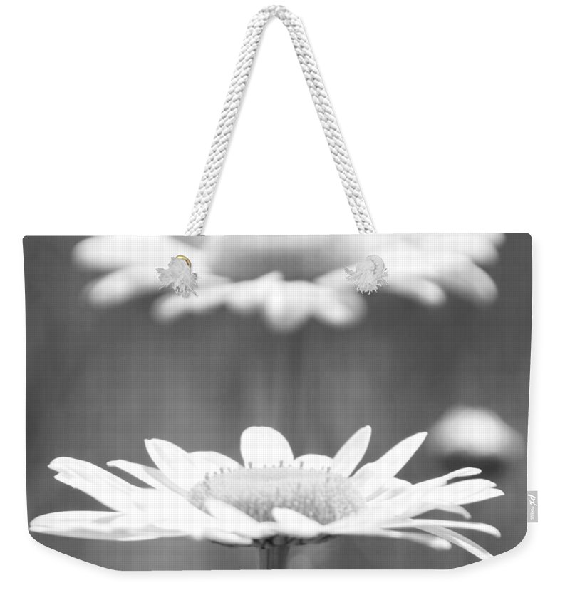 Daisy Weekender Tote Bag featuring the photograph Double Take by Amy Steeples