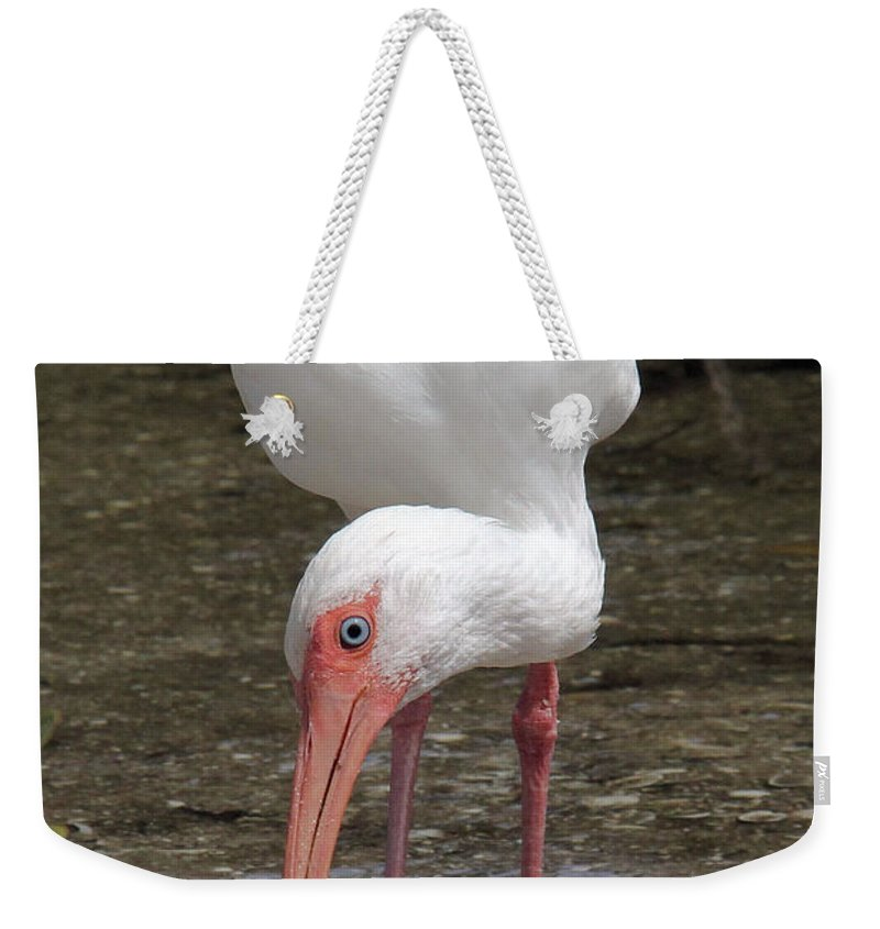 White Ibis Weekender Tote Bag featuring the photograph Down At The Beach by Doris Potter