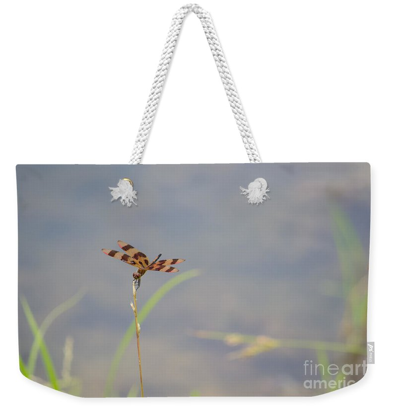 Dragon Weekender Tote Bag featuring the photograph Dragon Fly 4 by Scott Hervieux