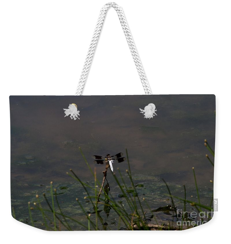 Dragon Weekender Tote Bag featuring the photograph Dragonfly 8 by Scott Hervieux