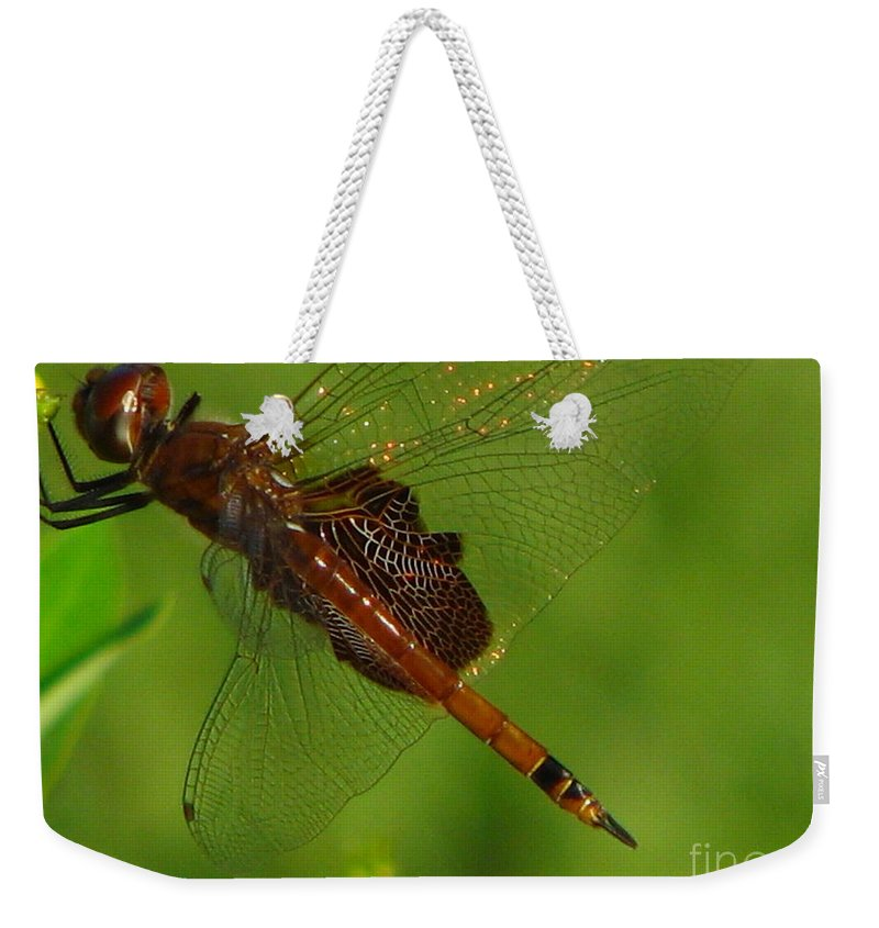 Art For The Wall...patzer Photographydragonfly Weekender Tote Bag featuring the photograph Dragonfly Art 2 by Greg Patzer