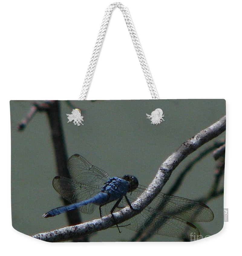 Art For The Wall...patzer Photography Weekender Tote Bag featuring the photograph Dragonfly by Greg Patzer