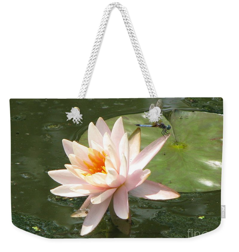 Dragon Fly Weekender Tote Bag featuring the photograph Dragonfly Landing by Amanda Barcon
