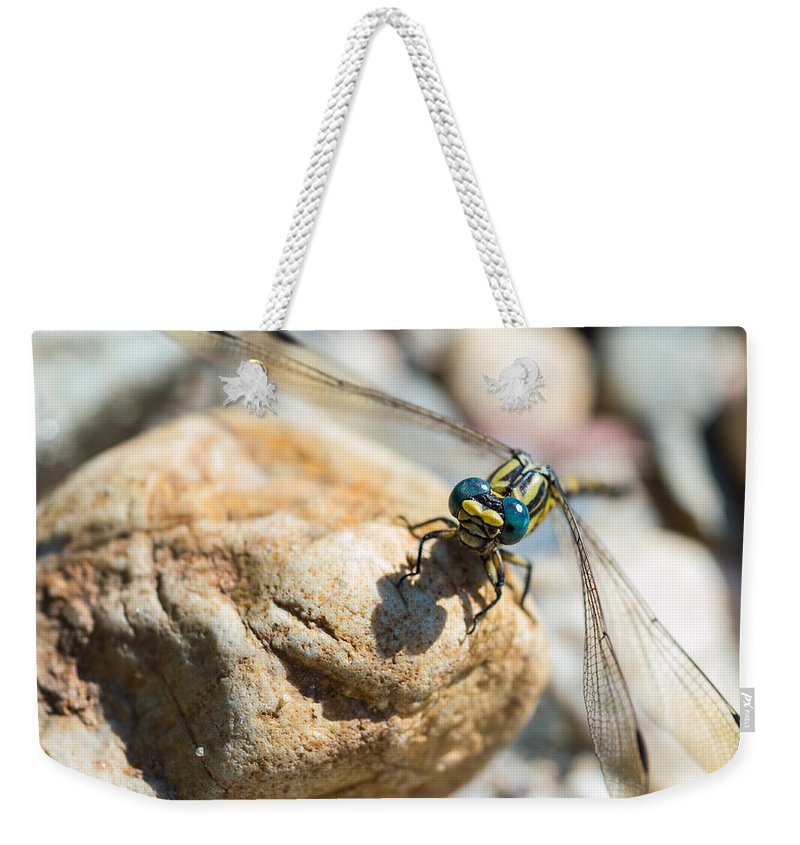 Damselfly Weekender Tote Bag featuring the photograph Dragonfly by Marco Oliveira