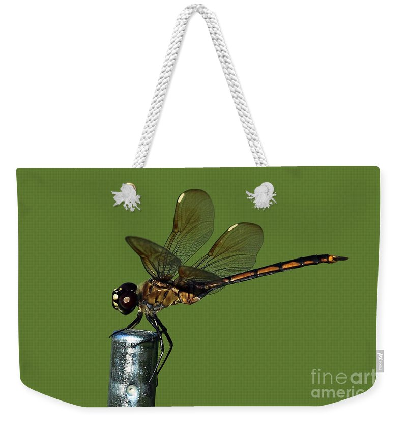 Dragonfly Weekender Tote Bag featuring the photograph Dragonfly by Meg Rousher