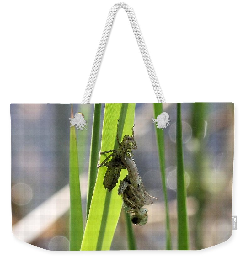 Dragonfly Weekender Tote Bag featuring the photograph Dragonfly Metamorphosis - First In Series by Doris Potter