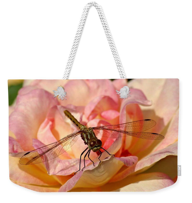 Dragonflies Weekender Tote Bag featuring the photograph Dragonfly On A Rose by Ben Upham III