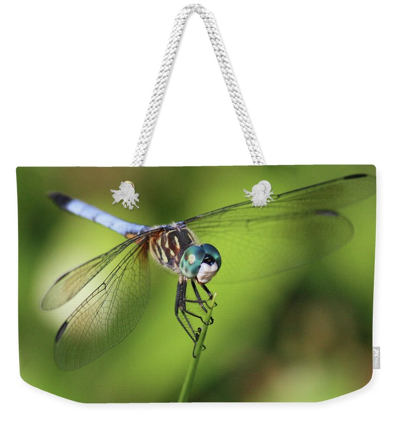 Dragonfly Weekender Tote Bag featuring the photograph Dragonfly Square by Carol Groenen