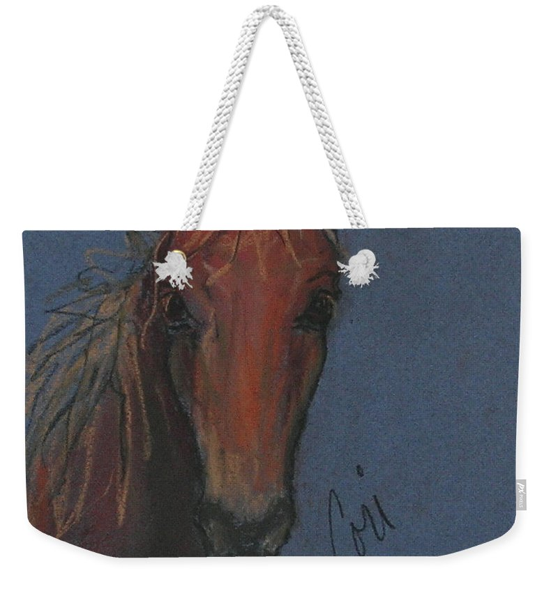 Horse Weekender Tote Bag featuring the drawing Dream Watcher by Cori Solomon