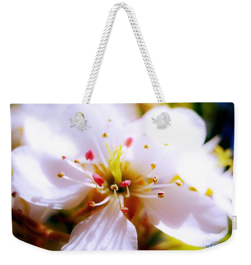 Blossom Weekender Tote Bag featuring the photograph Dreamy Cherry Blossom by Nina Ficur Feenan