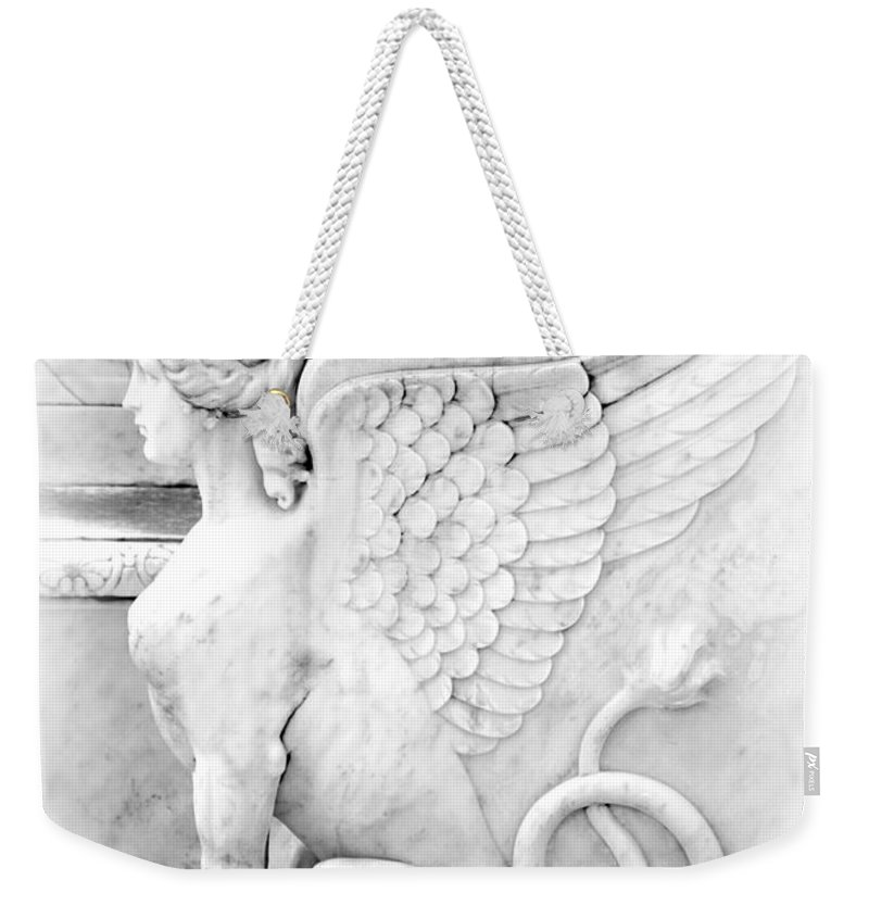 Sphinx Weekender Tote Bag featuring the photograph Dreamy Sphinx by Sabrina L Ryan