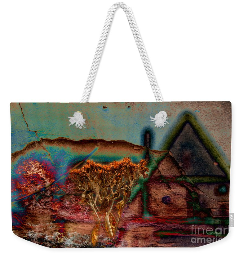 Composite Weekender Tote Bag featuring the photograph Dried And Growing From A Painted Rock by Jay Ressler