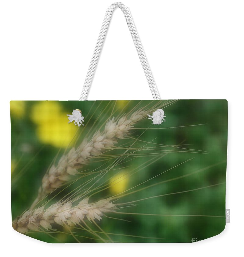 Dried Grass Weekender Tote Bag featuring the photograph Dried Grass In Soft Focus by Smilin Eyes Treasures