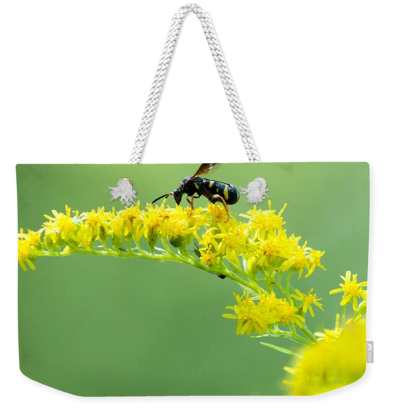 Optical Playground By Mp Ray Weekender Tote Bag featuring the photograph Drinking Up Flower Nectar by Optical Playground By MP Ray