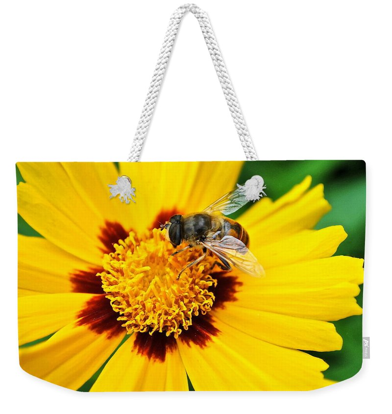 Queen Weekender Tote Bag featuring the photograph Drone Bee by Frozen in Time Fine Art Photography