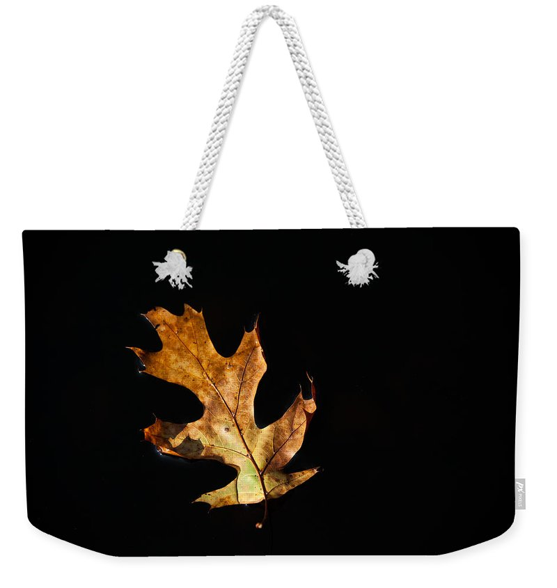 Leaf Weekender Tote Bag featuring the photograph Dry On Water by Karol Livote