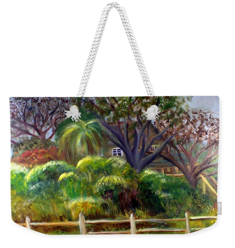 America Weekender Tote Bag featuring the painting Dubois House In Jupiter by Donna Walsh